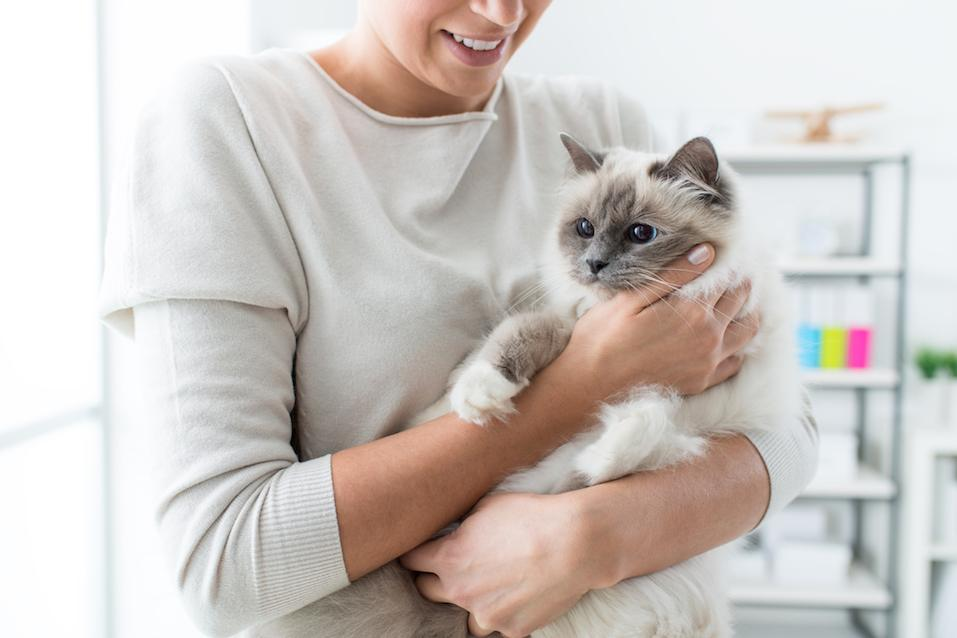 Woman holding her lovely cat