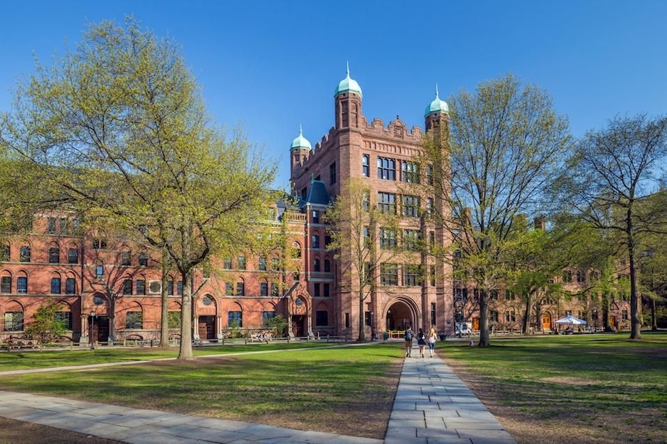 University Of New Haven Food