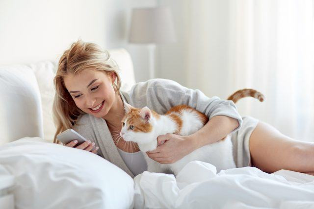 Woman with cat and smartphone in bed at home.
