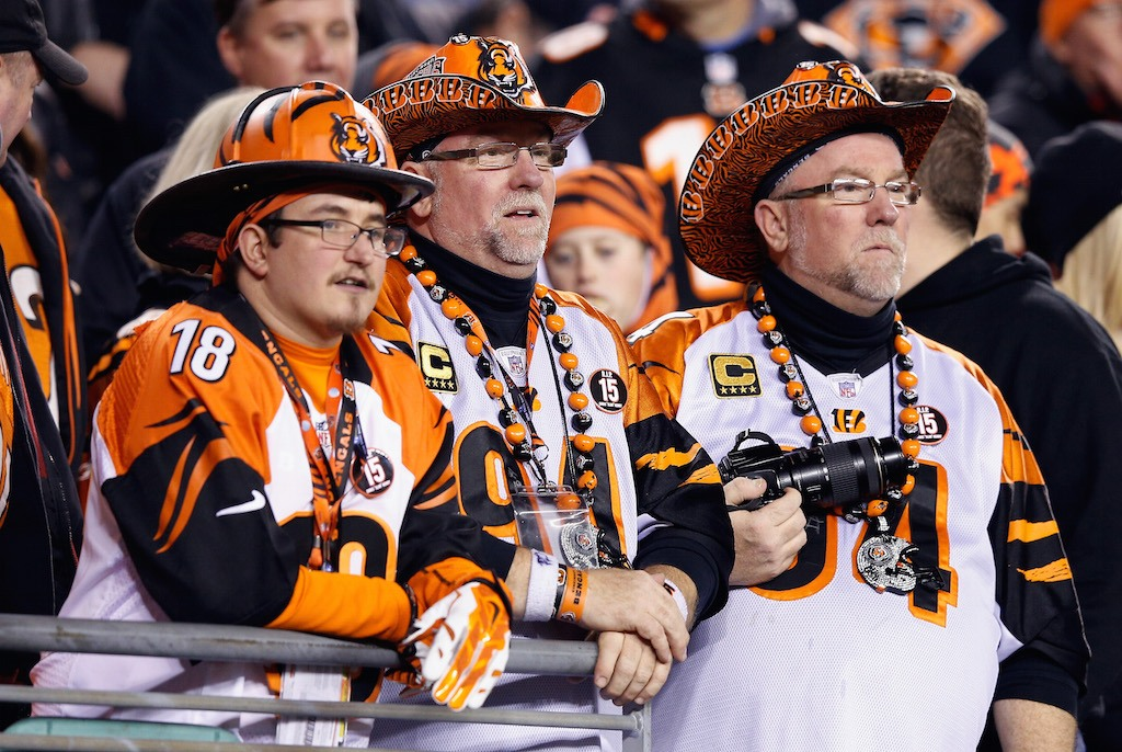 Bengals fans look on during a playoff game.