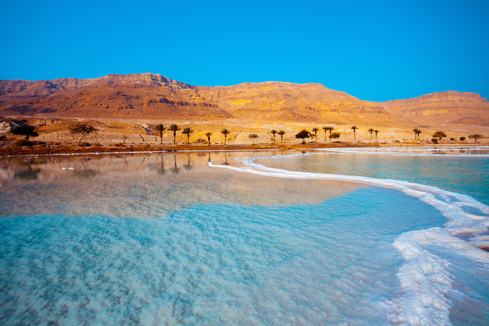 Dead Sea seashore with palm trees and mountains on background
