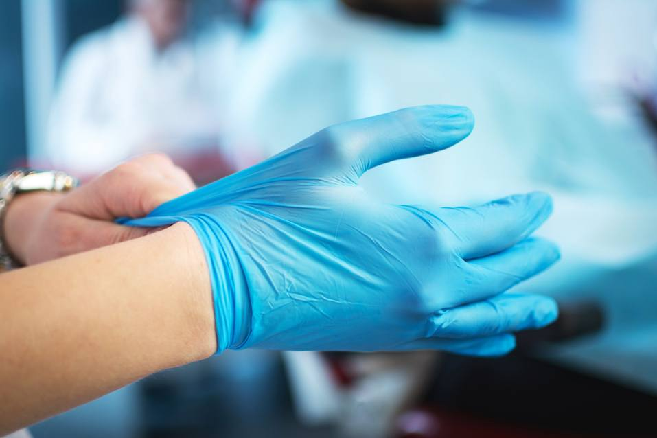Female doctor's hands putting on blue sterilized surgical gloves
