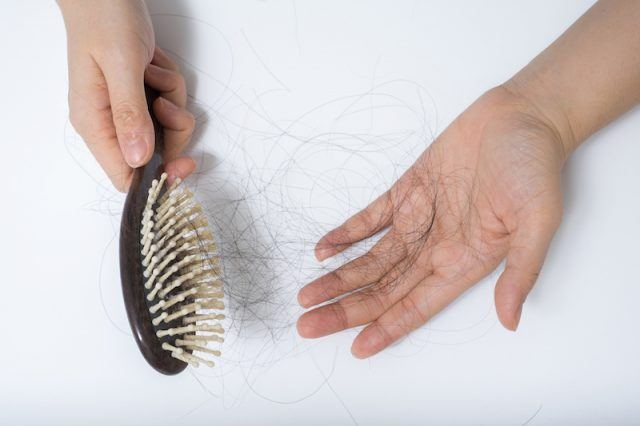 A hair brush with a hand full of hair in a white background.