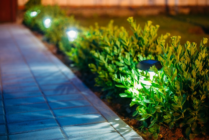 Solar Garden Light, Lanterns In Flower Bed. Garden Design