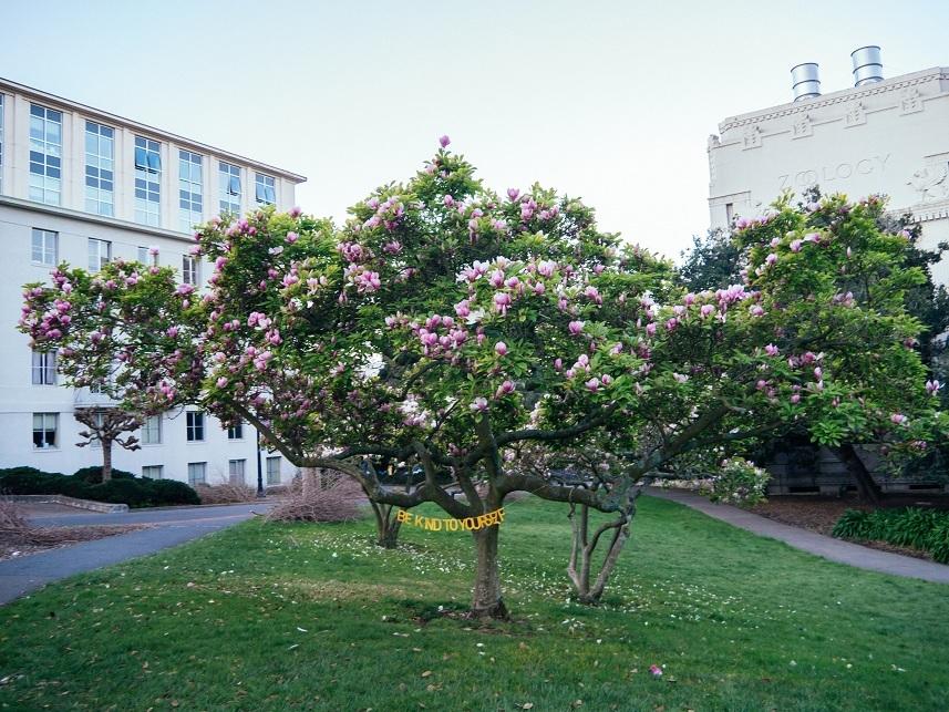 Campus of University of California, Berkeley