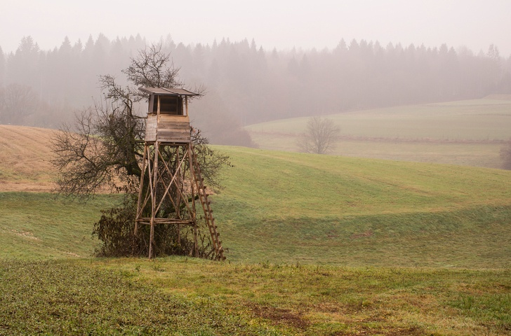 Wooden hunting lodge in the field