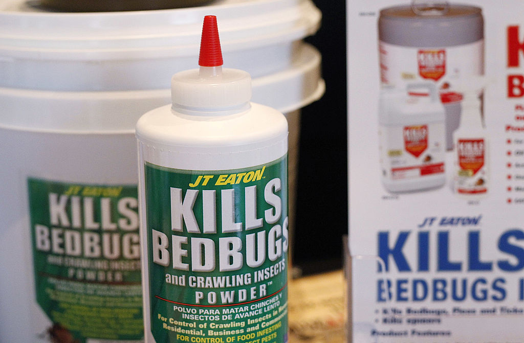 Bed bug insecticide products