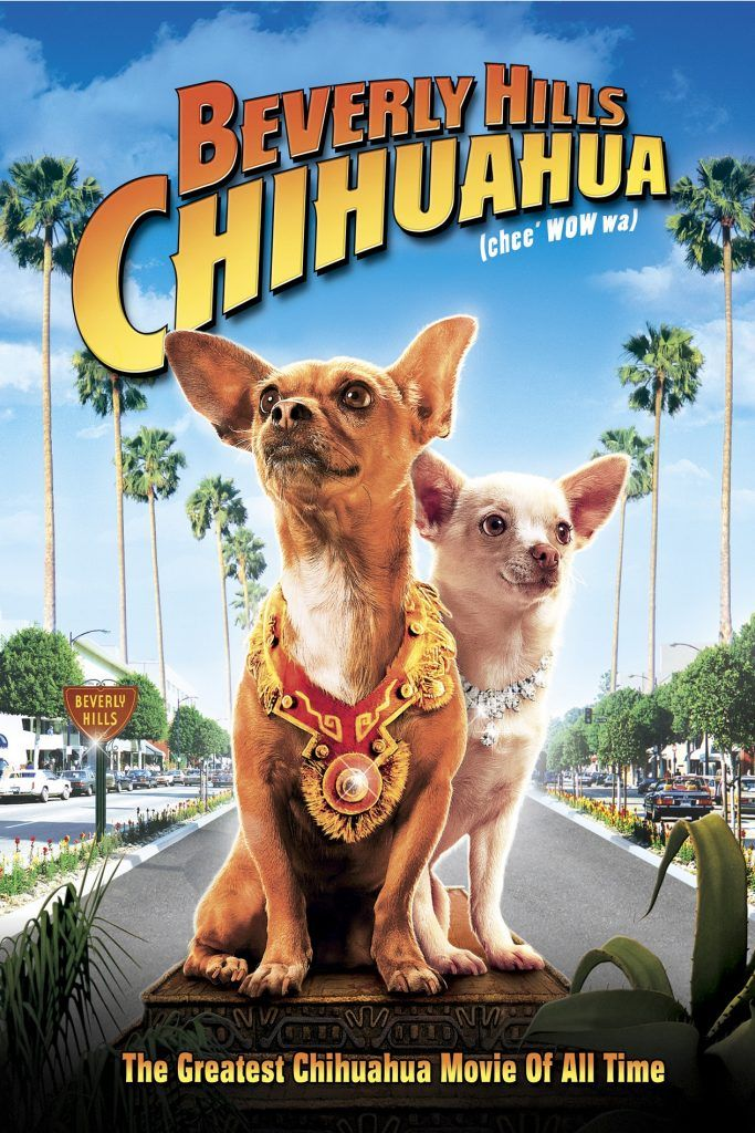Movie poster for the film Beverly Hills Chihuahua.