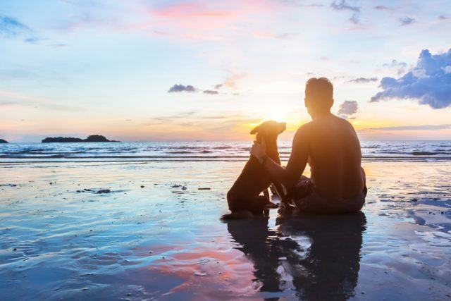 Man and dog sitting together on the beach at sunset.