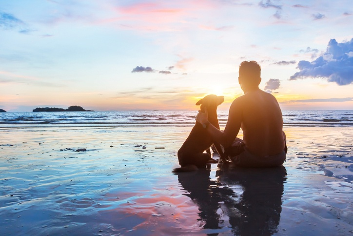 man and dog sit together on the beach at sunset