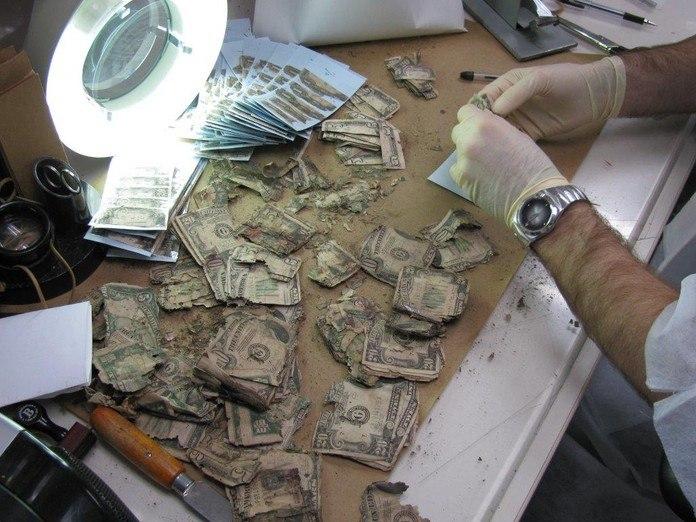 damaged money