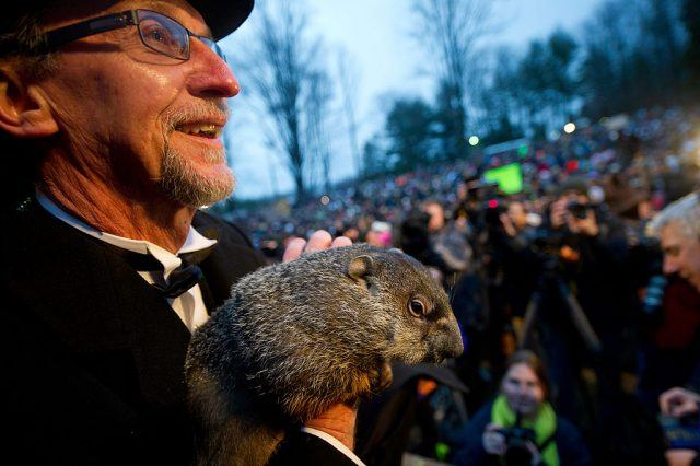 Groundhog handler Ron Ploucha holds Punxsutawney Phil after he saw his shadow