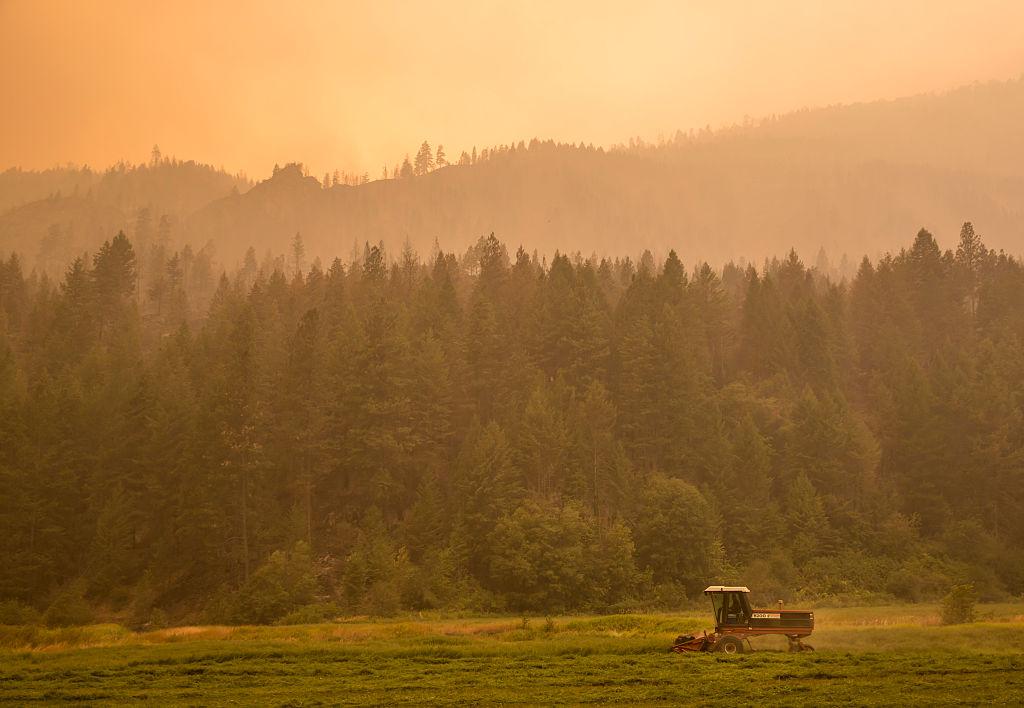A farmer mows alfalfa amid the smoke near Omak, Washington.