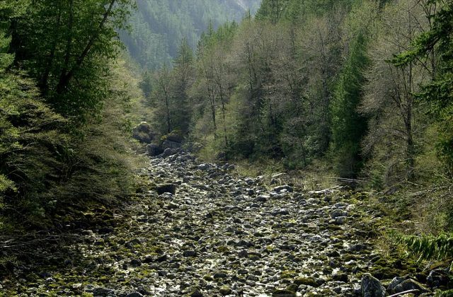 The Skagit River is nearly dry below Diablo Lake which awaits water from the spring runoff