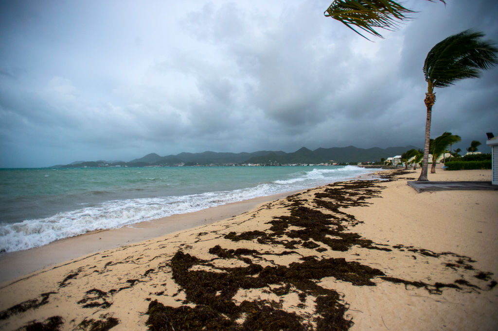 Bai Nettle beach in Marigot before the arrival of Hurricane Irma