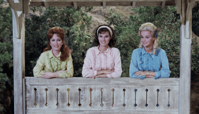Linda, Laura and Gunilla stand together at a fence and smile.