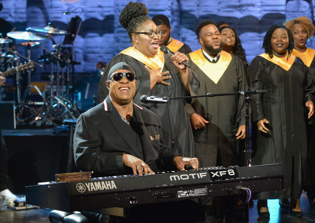 Stevie Wonder performs at Hand in Hand benefit