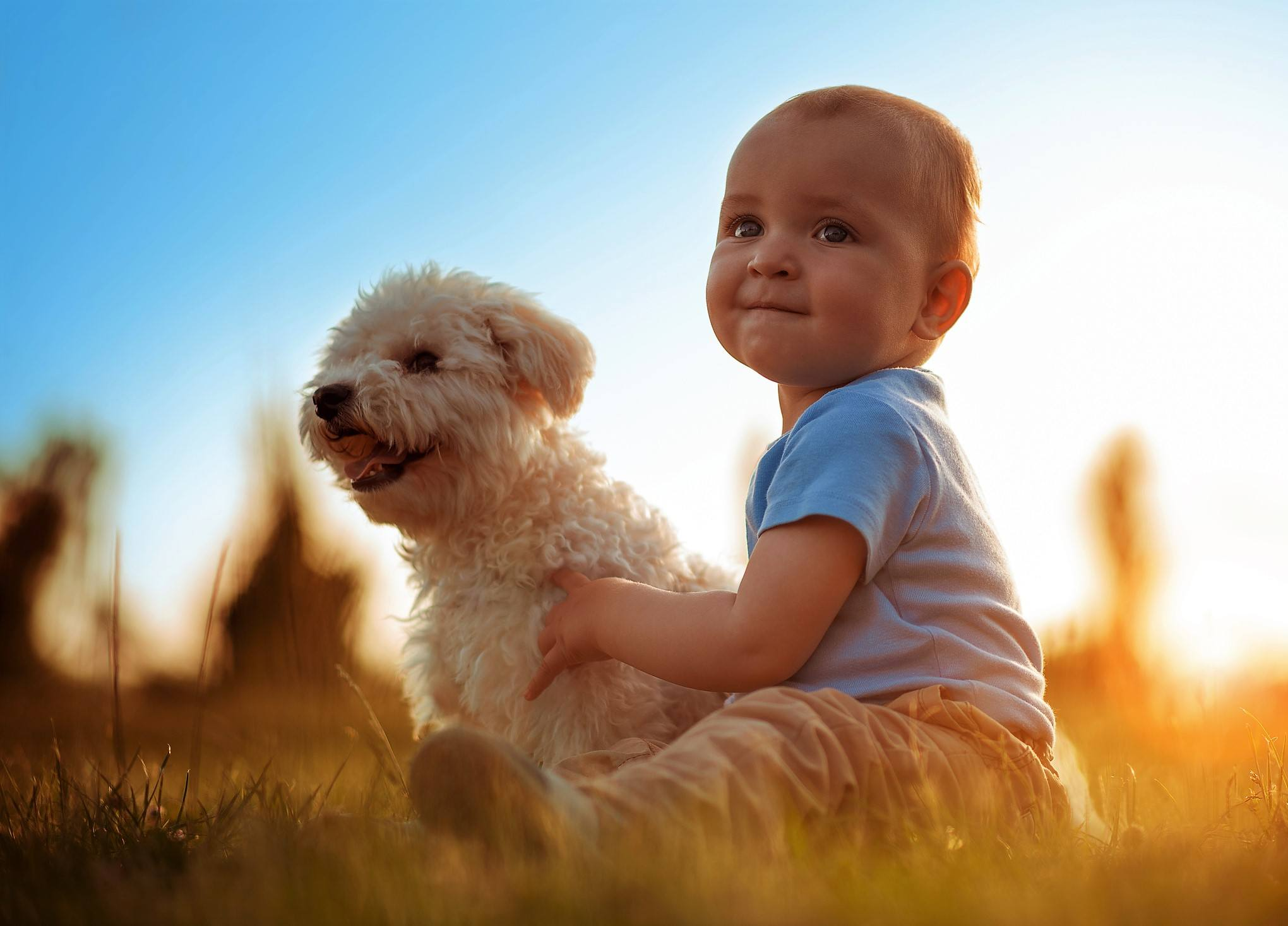 Baby and dog outside