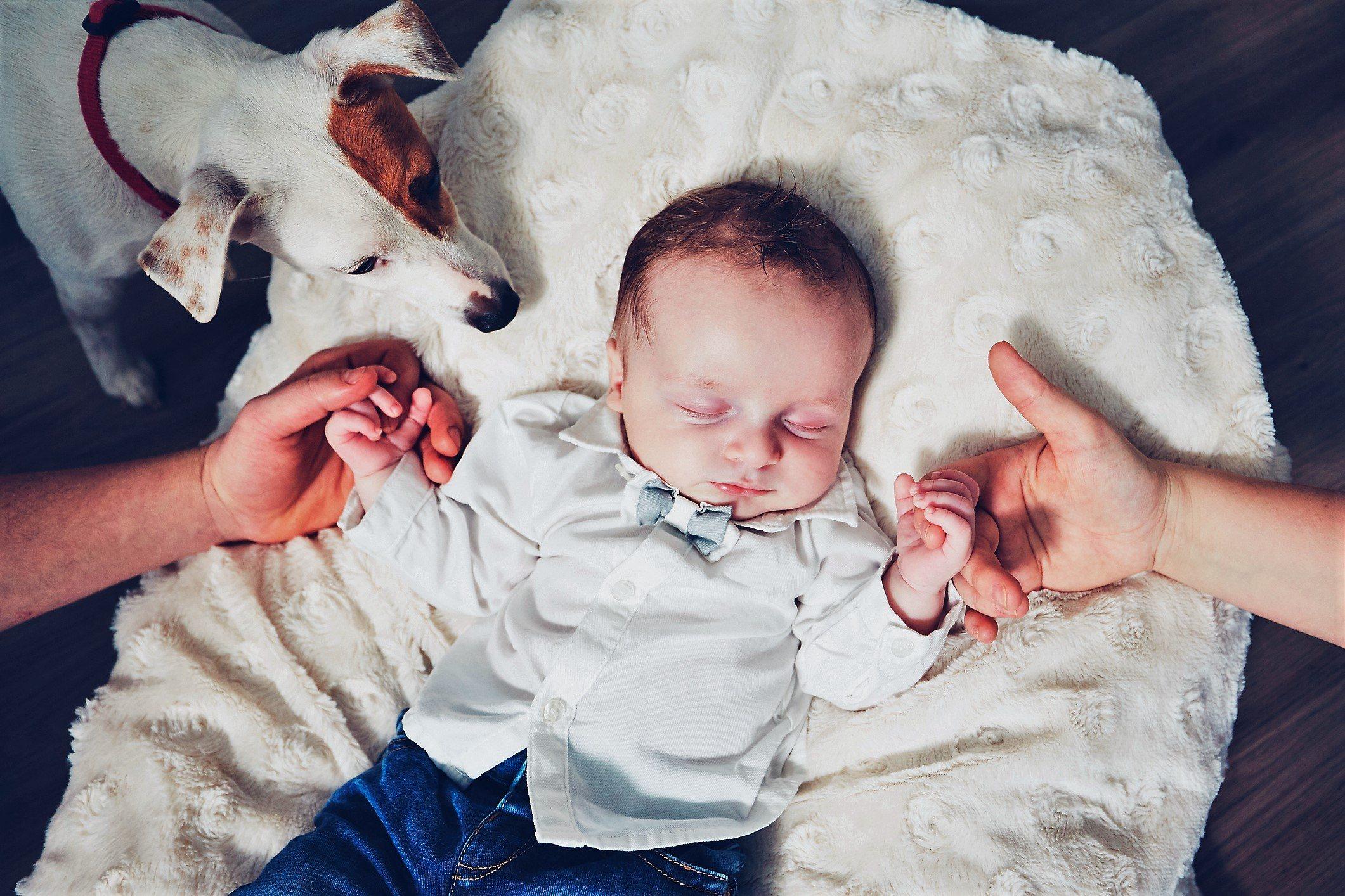 Dog watching over sleeping baby