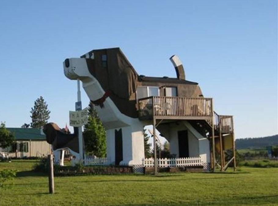 Dog hotel Airbnb