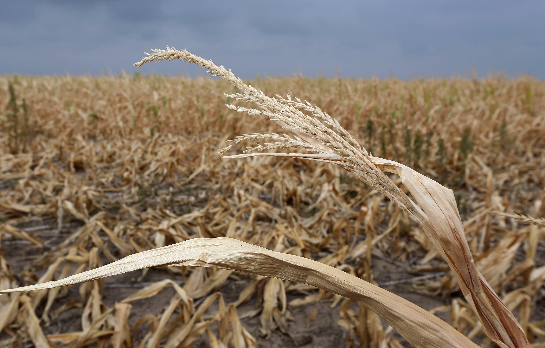 Kansas faces severe drought