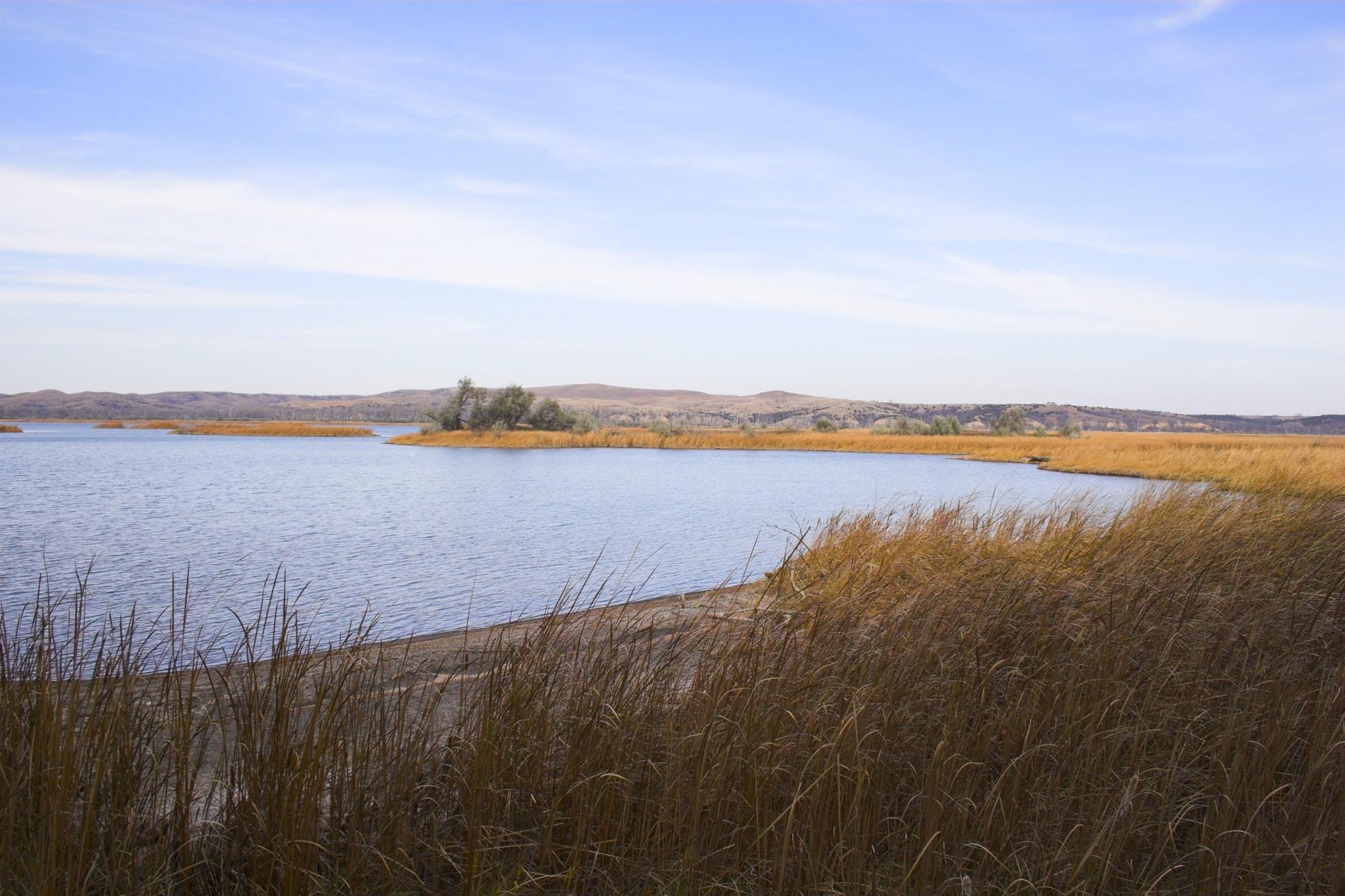 Lake prairie
