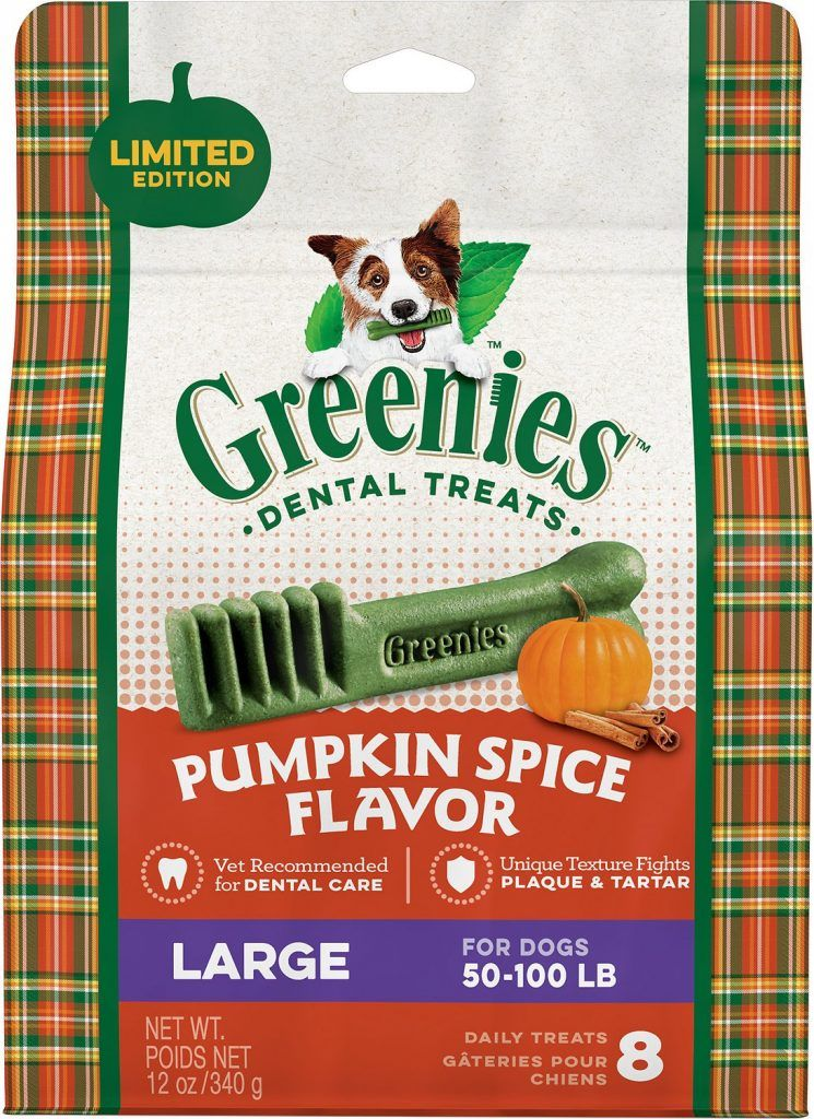 Greenies pumpkin spice dog treats