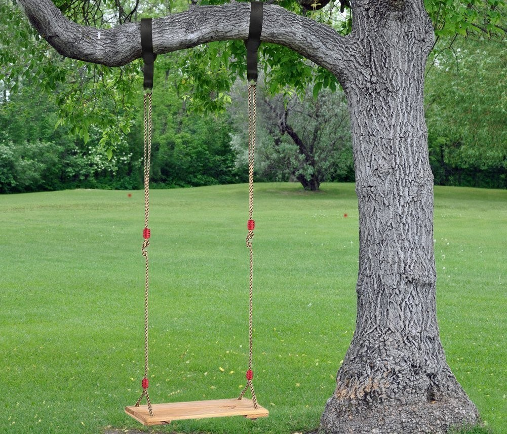 Rope swing on a tree
