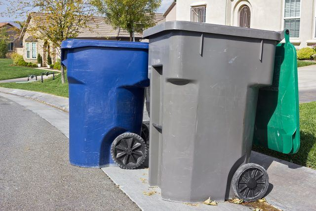 trash cans at the curb