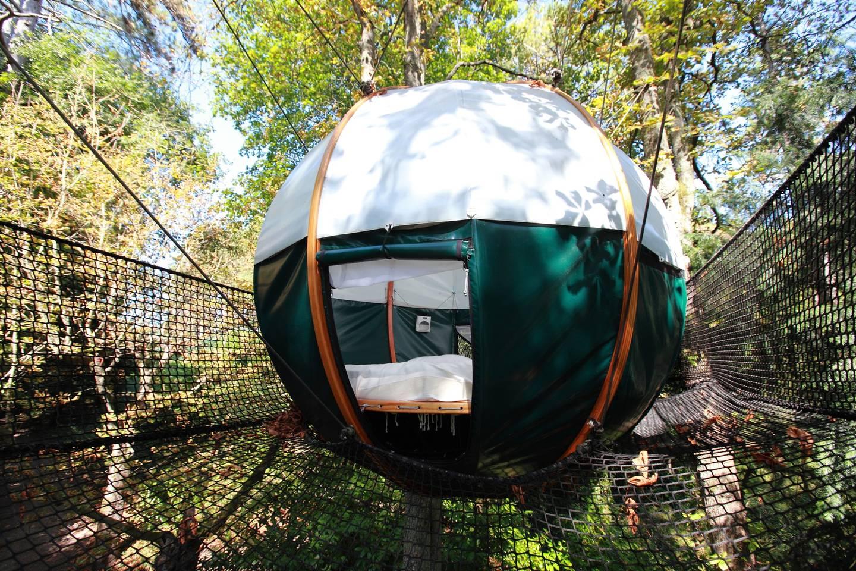 Round tree tent