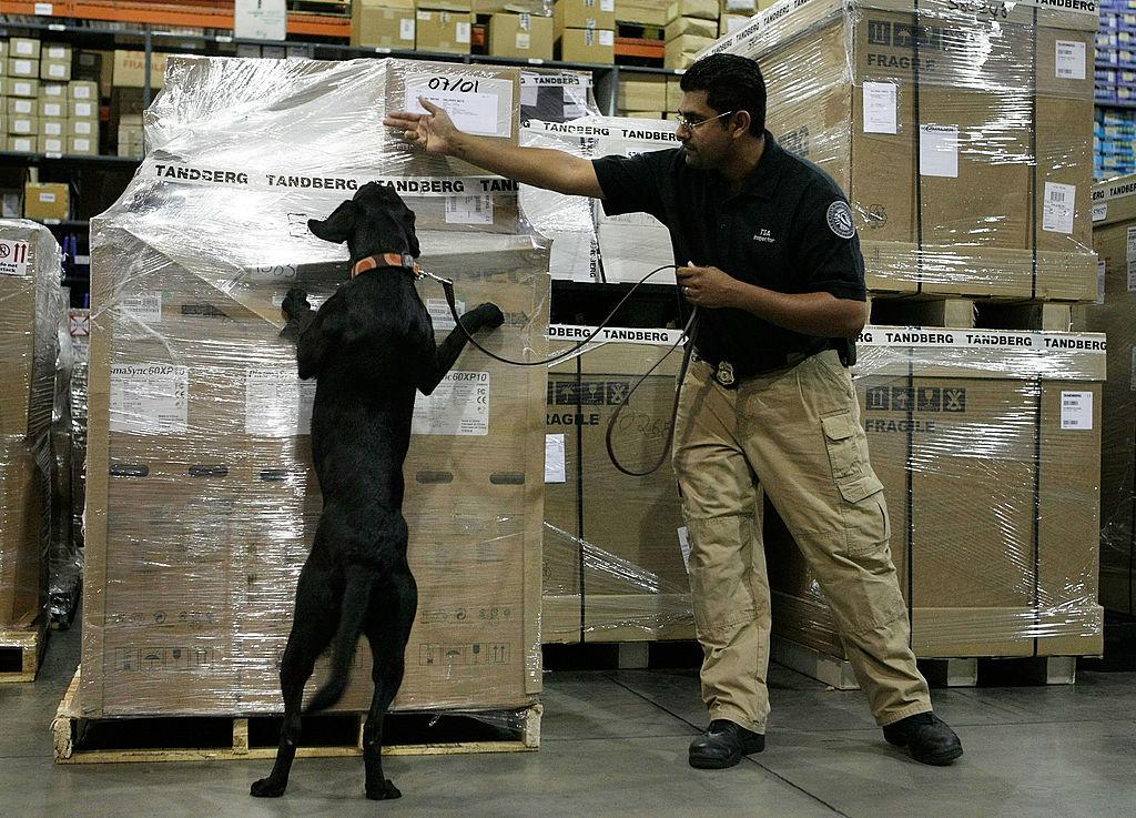 TSA bomb sniffing dog and handler