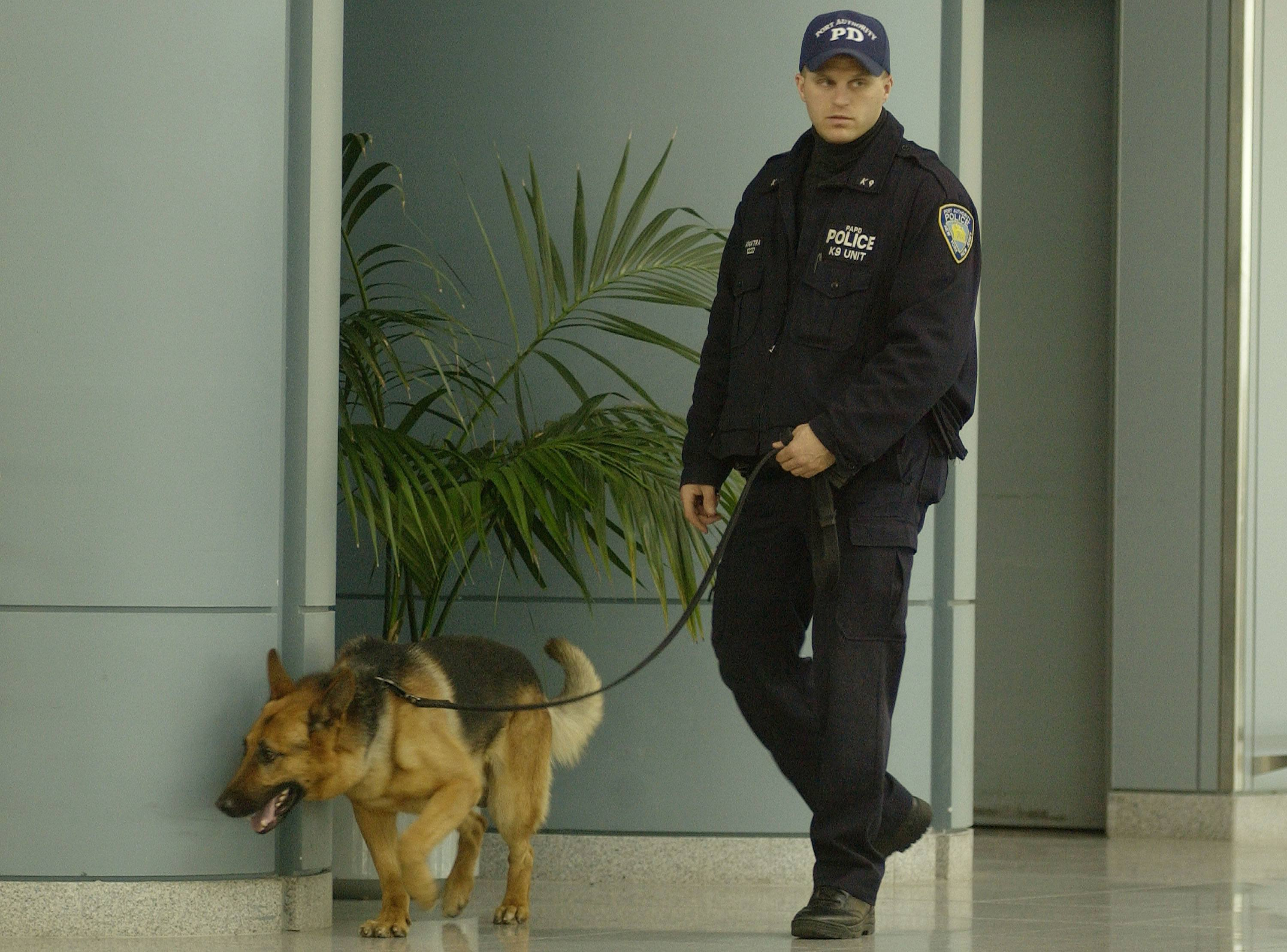 Canine TSA dog and partner