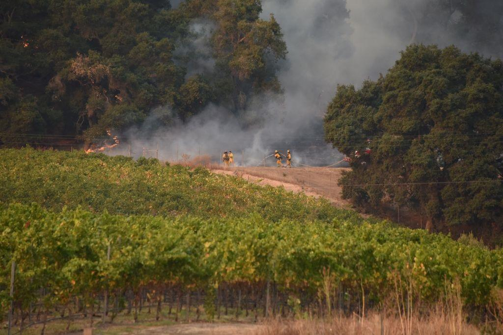 Firefighters protect a vineyard in Santa Rosa, Calif.