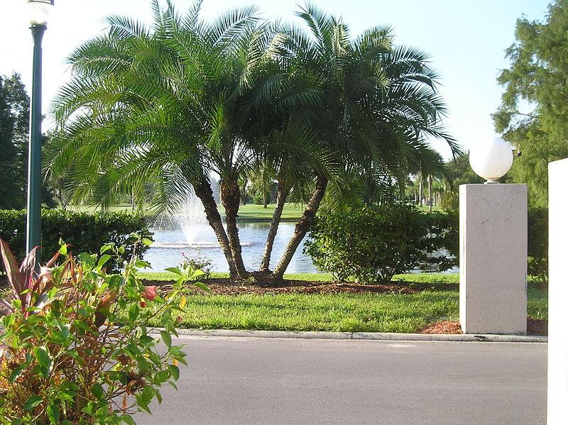 Lehigh Acres, Florida
