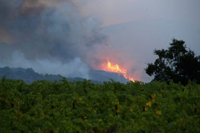 A forest fire and smoke seen from afar.
