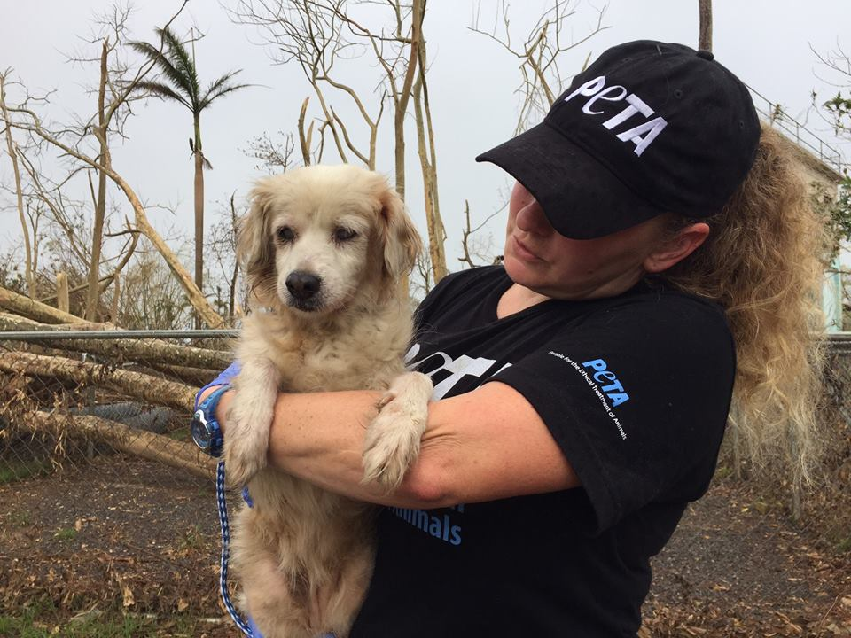 PETA volunteer with dog