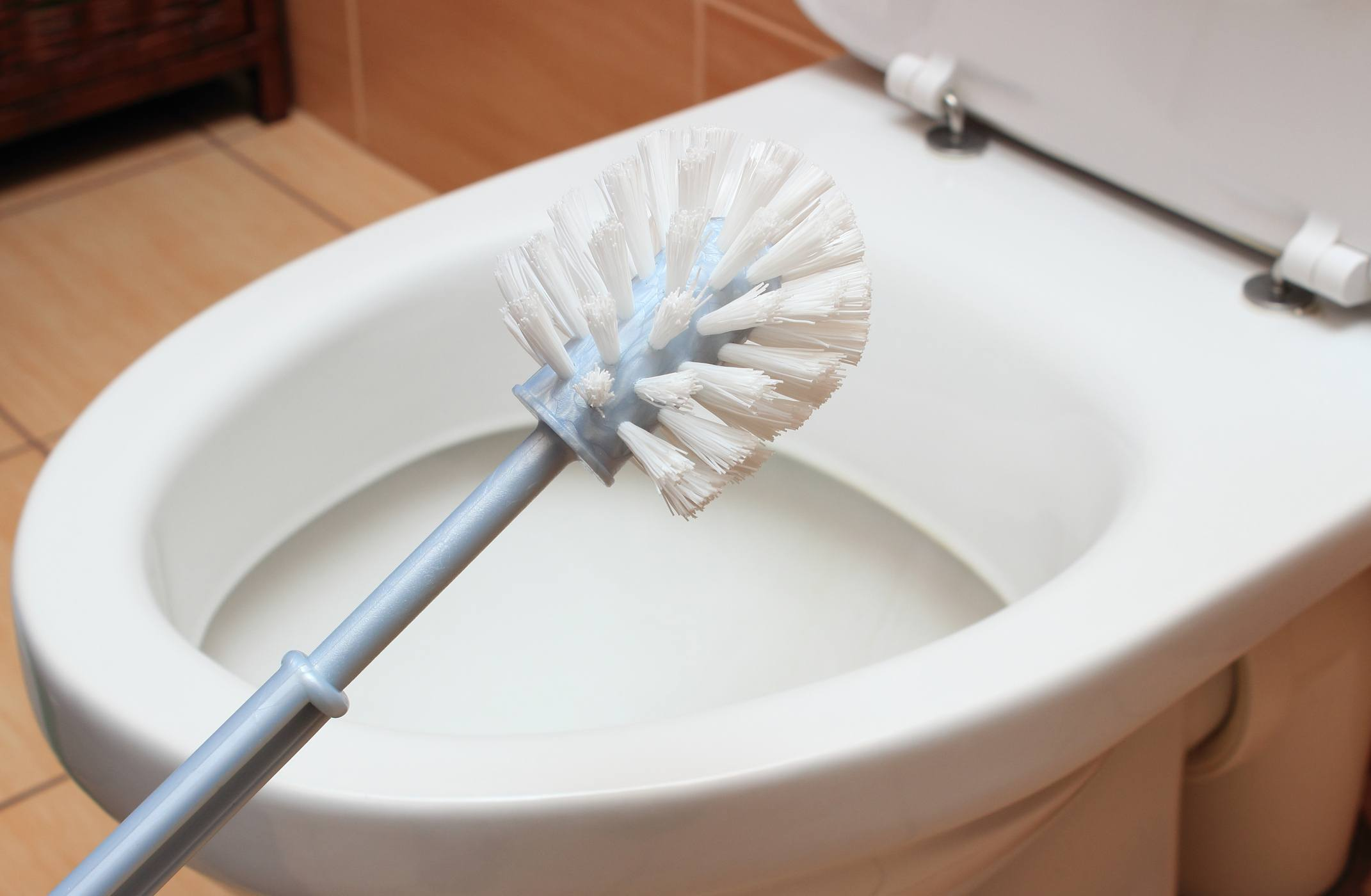 Toilet brush cleaning toilet