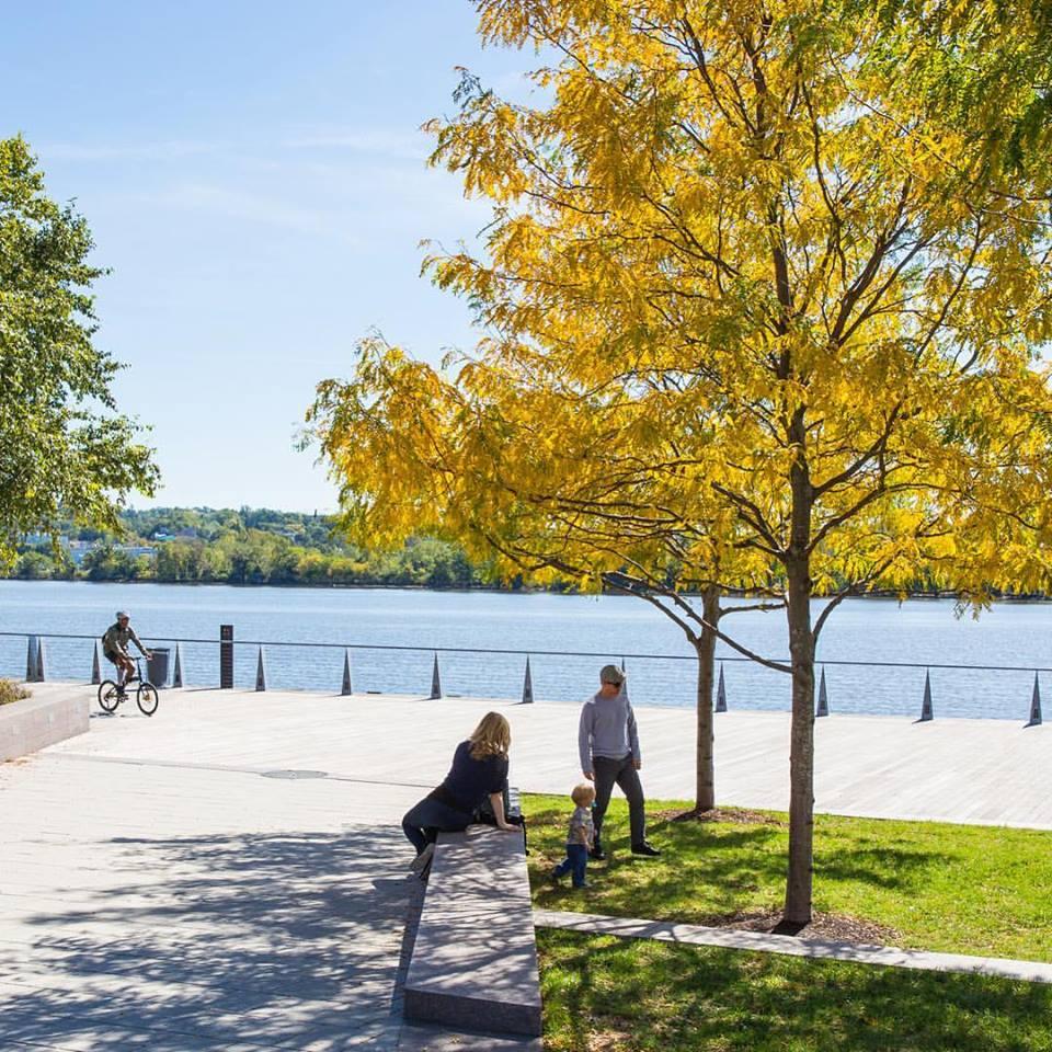 Yards Park Washington d.C.