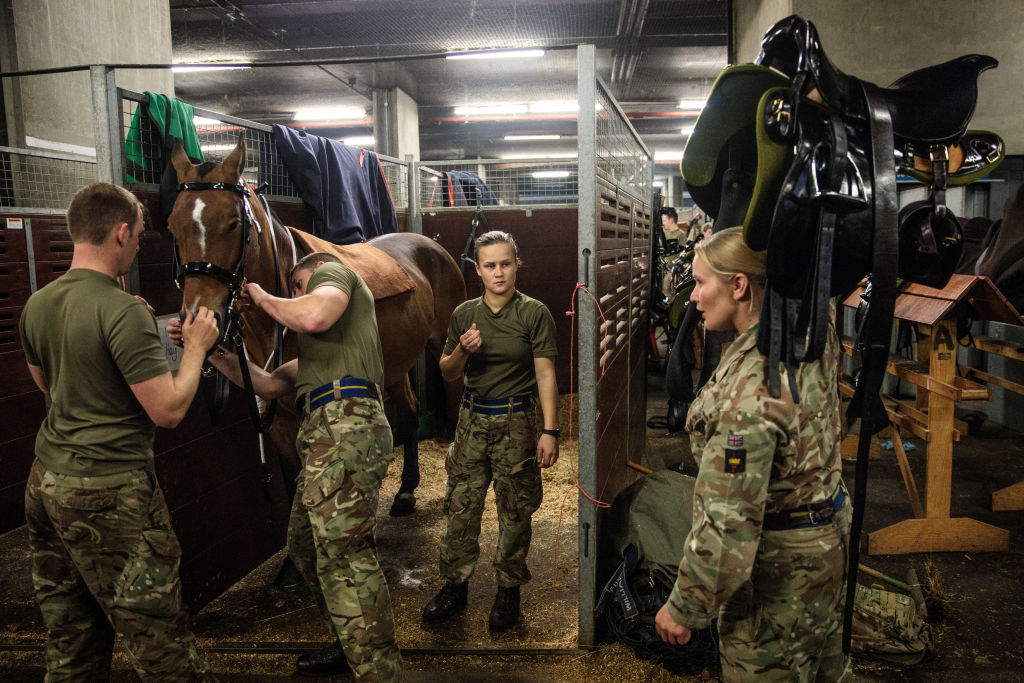 Soldiers take care of their military horses.