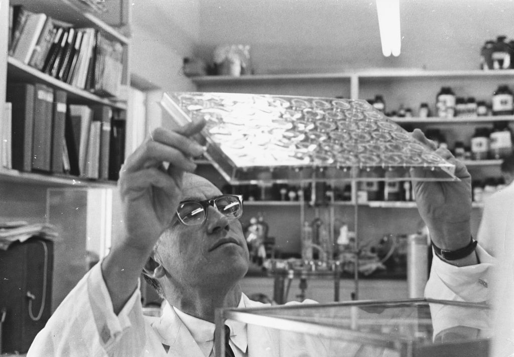 Dr Jonas Salk studying slides in his laboratory