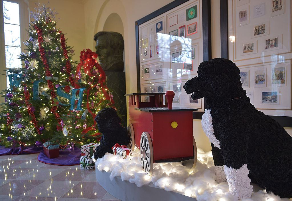 mechanized dogs in the 2014 white house