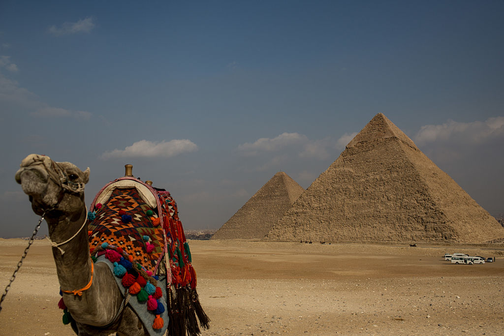 a camel outside a great pyramid