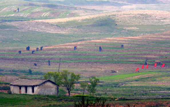 A wide view of north korean farm lands