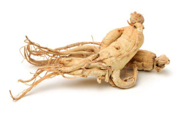 American ginseng on a white surface.