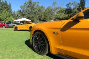 2018 Ford Mustang: What We Learned Trying to Tame 460 Horses