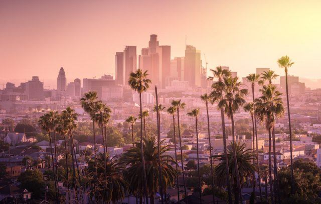 The city of Los Angeles seen from a distance among palm trees.