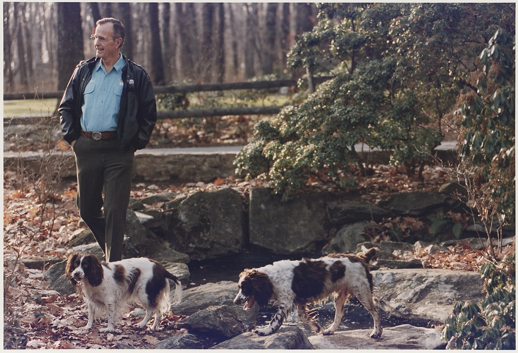 President George H. W. Bush and Millie the dog