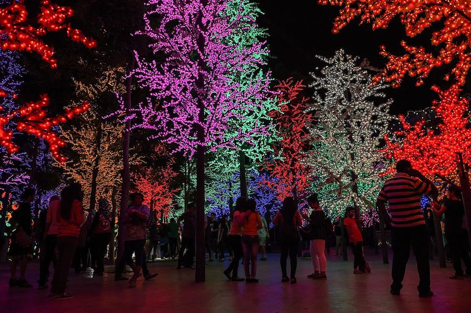 Christmas trees illuminated by LED lights on the eve of Christmas in Shah Alam, outside Kuala Lumpur