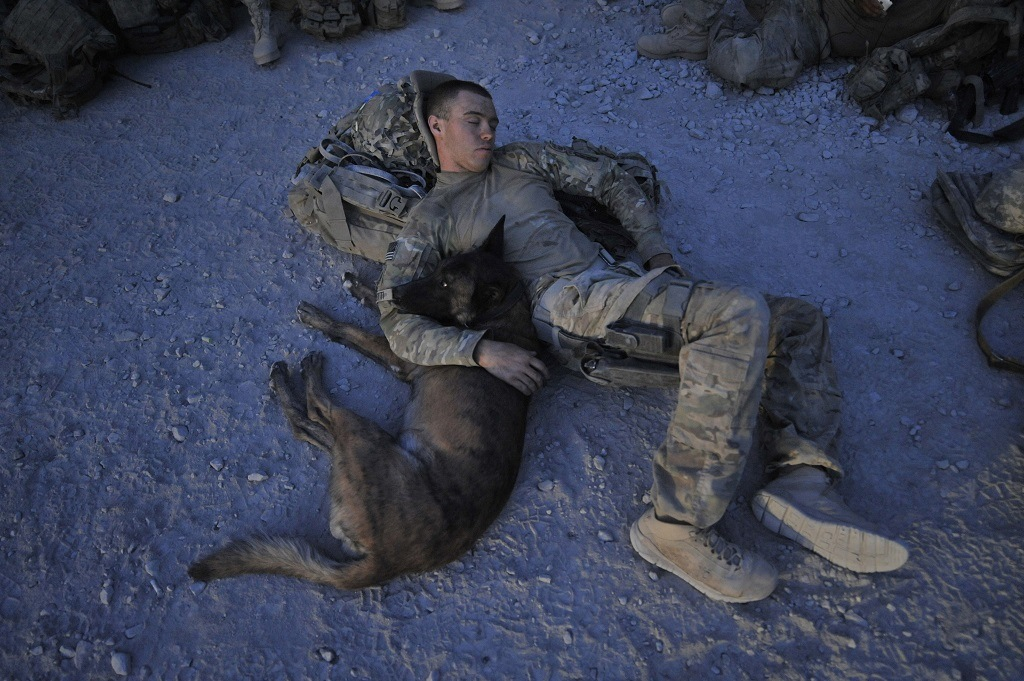 U.S. Army Specialist Justin Coletti of US Forces Afghanistan K-9 combat tracker team rests with Dasty, a Belgian Malinois, following a five-hour overnight air assault mission against the Taliban.