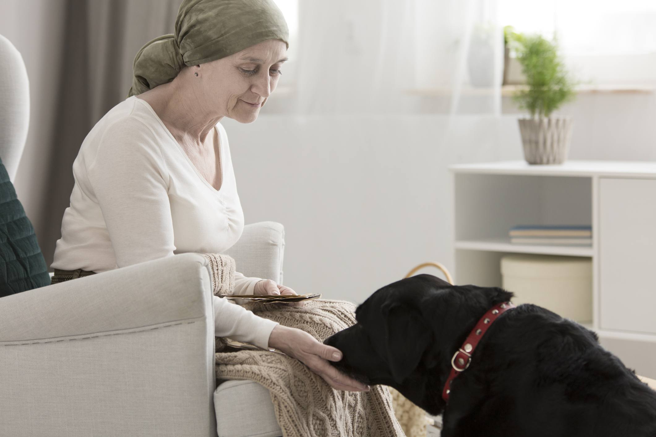 Cancer patient with therapy dog